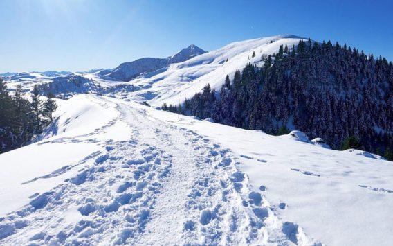 cropped-ski-bus-pyrenees-toulouse-015.jpg